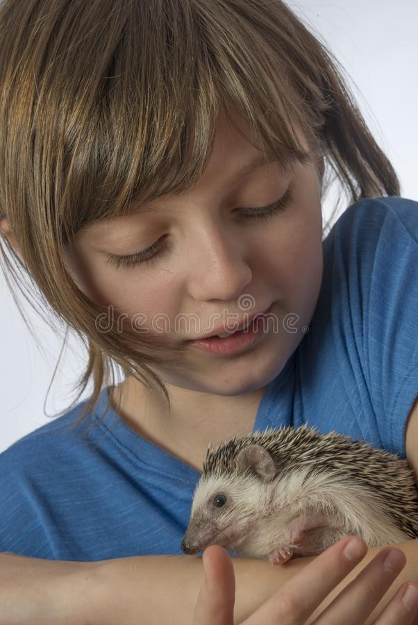 Happy litle girl with her pet African pygmy hedgehog stock photo