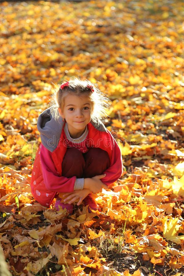 Happy little baby girl playing in autumn in yellow leaves stock image