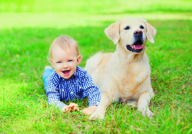 Happy little boy child and Golden Retriever dog is lying together on the grass on summer park stock image