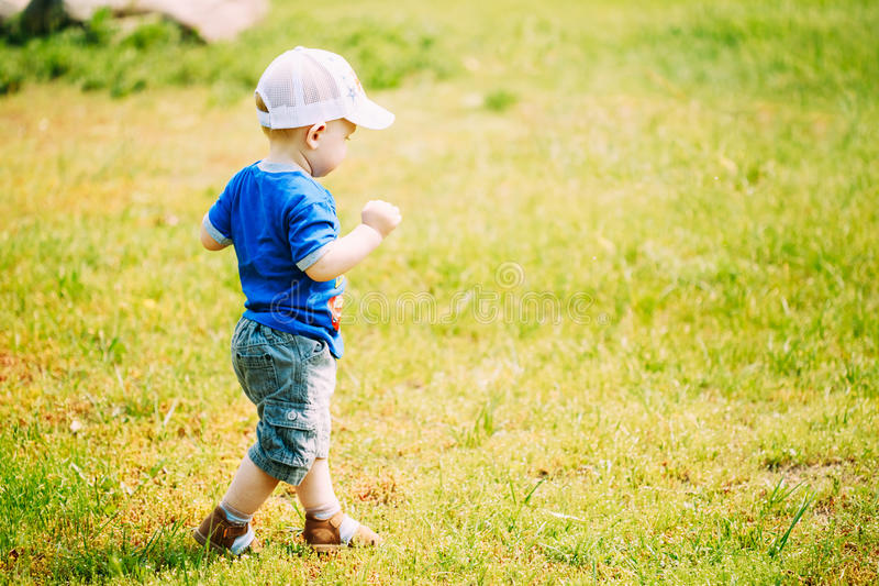 Happy Little Boy Child Running On Summer Green. Grass Meadow, Park, Sunny Day Outdoor royalty free stock images