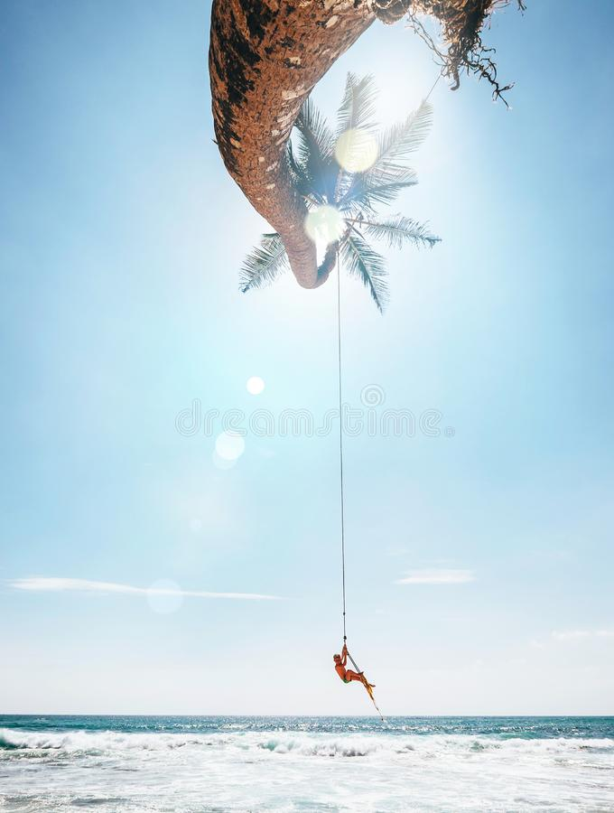 Happy little boy dangles on tropical palm tree swing. Careless happy childchood concept image royalty free stock images