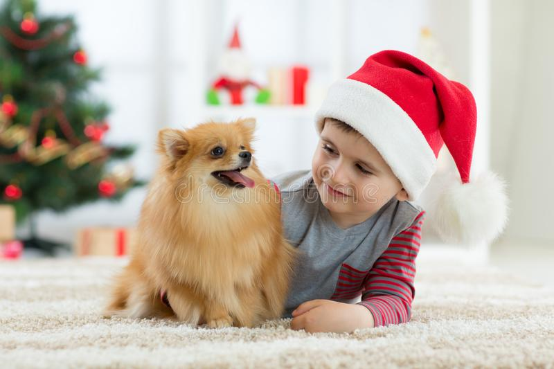 Happy kid little boy and dog as their gift at Christmas. Christmas interior royalty free stock photo