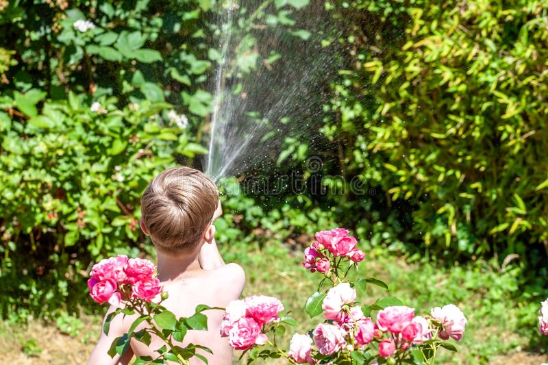 Happy little boy having fun with squirt gun in the garden.  stock images