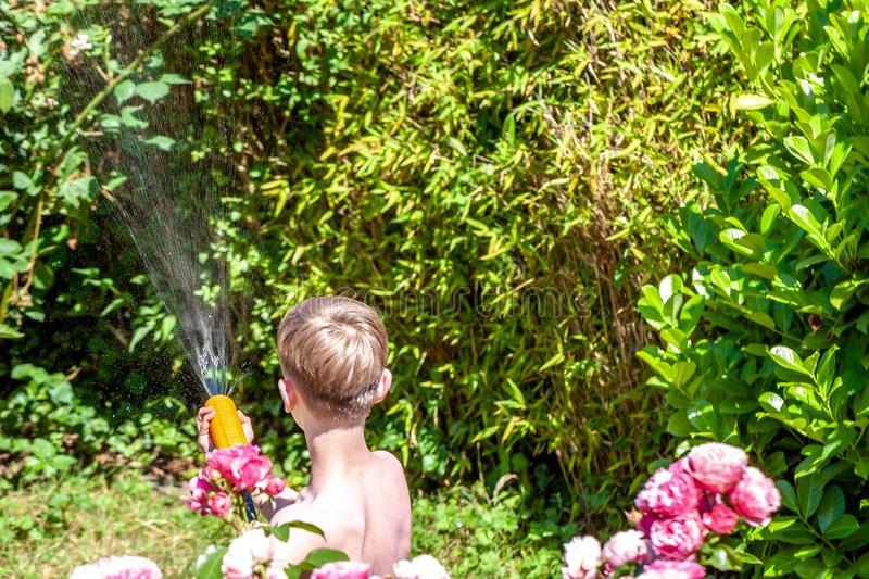 Happy little boy having fun with squirt gun in the garden.  stock image