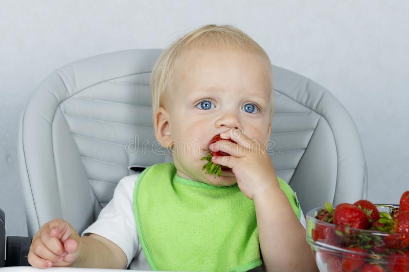 Happy little boy with strawberries in a baby chair, cute toddler eating ripe fruits royalty free stock images