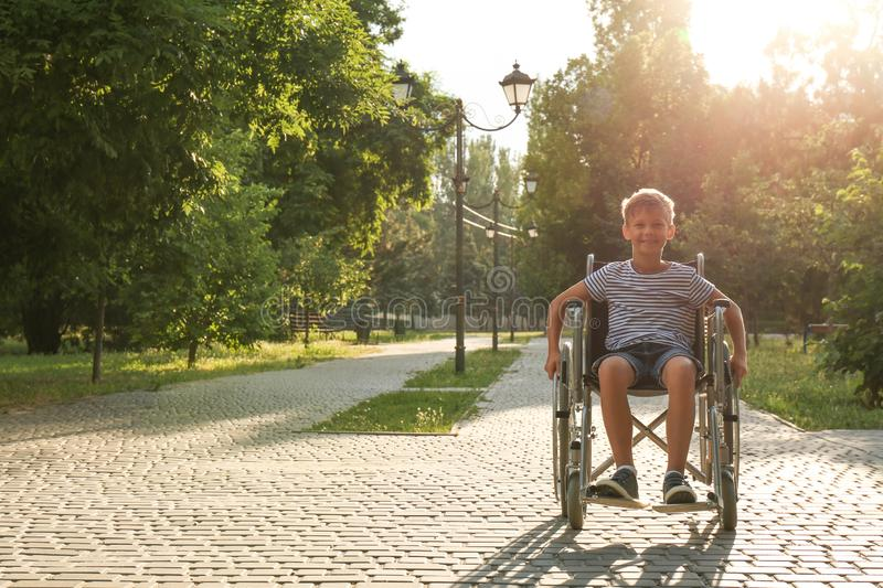 Happy little boy in wheelchair at park on sunny day royalty free stock photography
