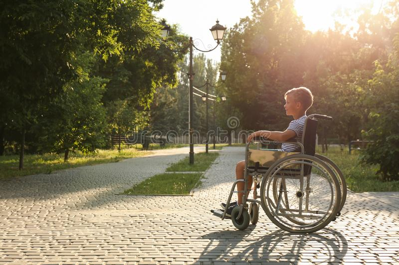 Happy little boy in wheelchair at park on sunny day. Space stock photos