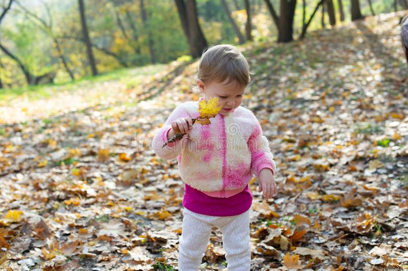 Happy little child, baby girl laughing and playing in the autumn on the nature walk outdoors stock images