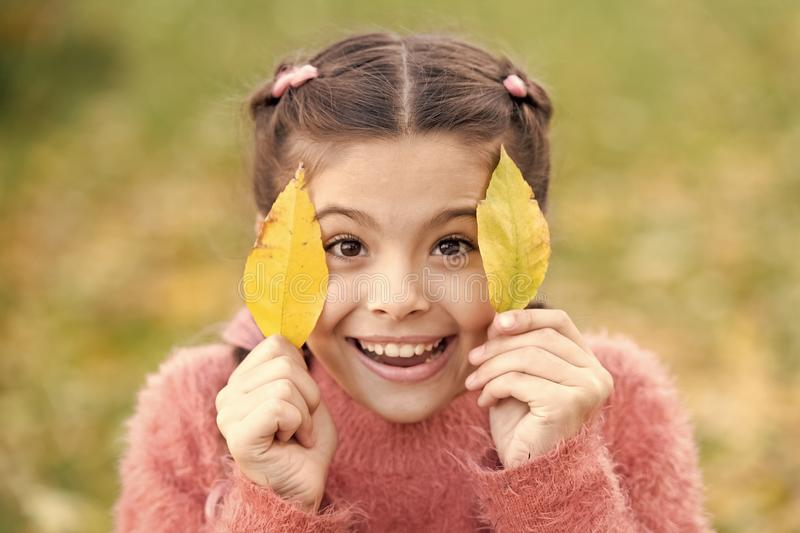 Happy little girl in autumn forest. Small child with autumn leaves. Happy childhood. School time. Autumn leaves and stock photography
