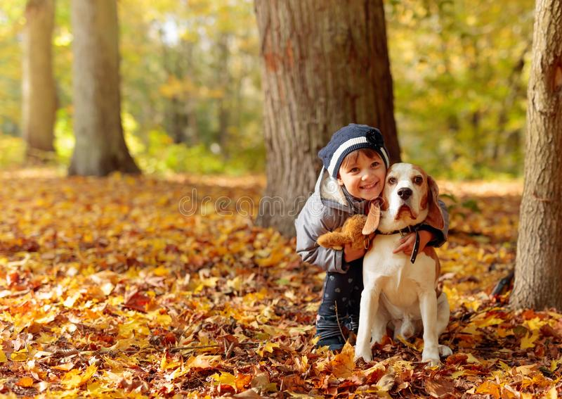 Little girl with beagle outdoors in the autumn park royalty free stock photo