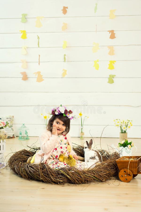 A happy little girl in a dress with flowers on her head is sitting in a nest and holding cute fluffy Easter ducklings in her arms stock photos