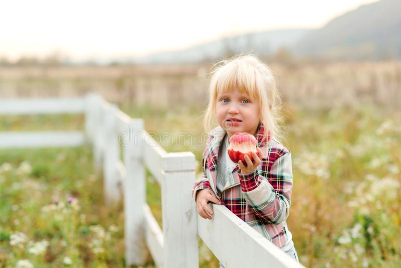 Happy little girl eating apple outdoors. Cute child girl on a walk on a farm. Girl with amazing eyes and blonde hair. Healthy food. Concept. Summer time royalty free stock photos