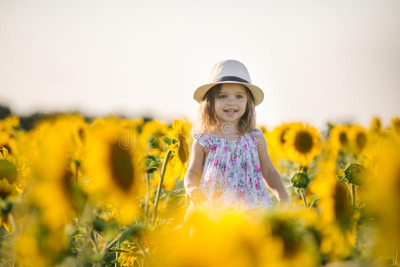 Happy little girl on the field of sunflowers in summer. beautiful little girl in sunflowers royalty free stock photography