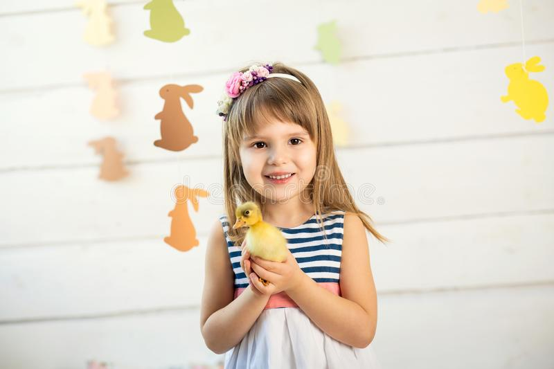 Happy little girl with flowers on her head holding a cute fluffy easter duckling.  stock photography