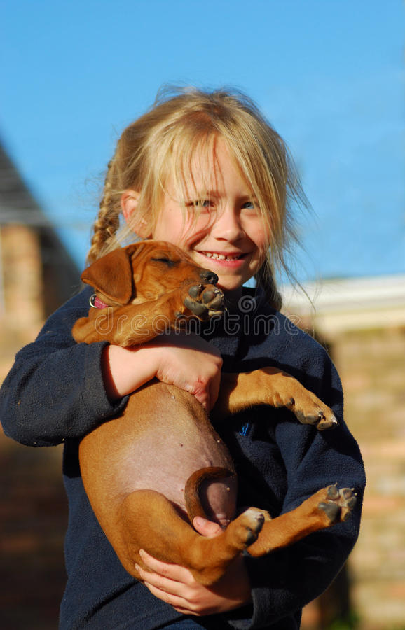 Happy little girl with her puppy. A cute little blond Caucasian girl child with happy facial expression carrying her new purebred Rhodesian Ridgeback puppy royalty free stock image