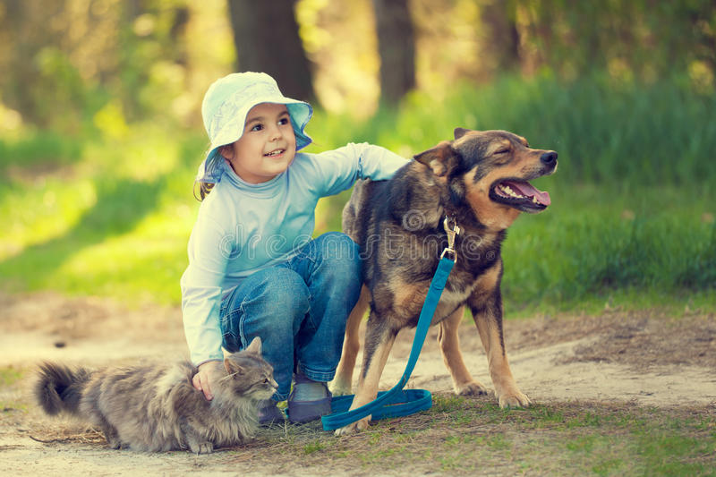 Happy little girl hugging dog and cat. Outdoors in forest in summer stock images