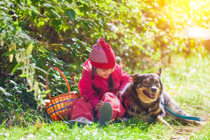 Little girl sitting with dog in the forest royalty free stock images