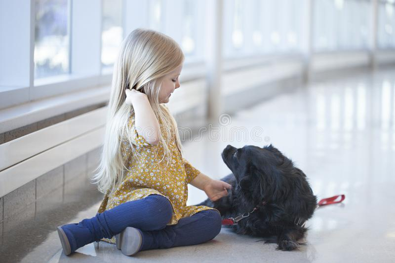 Happy little girl sitting on floor and playing with black dog royalty free stock photos