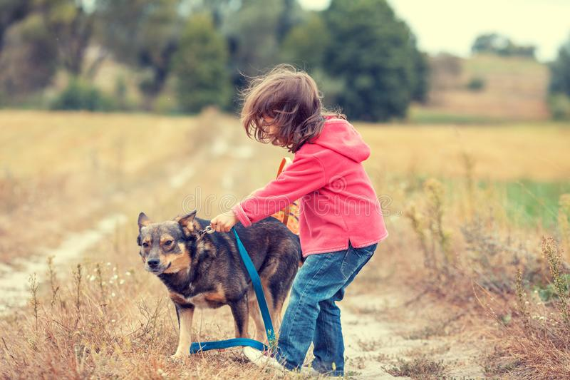 Little girl walking with dog in the field royalty free stock photography