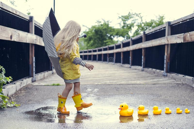 Girl with ducks royalty free stock image