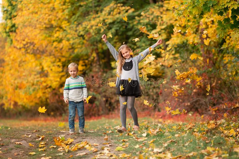 Happy little kids with autumn leaves in the park royalty free stock photography