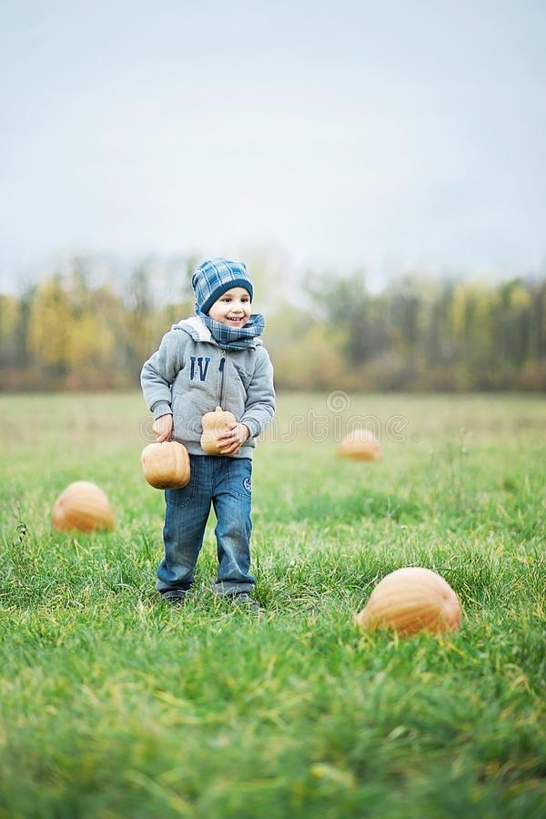 Happy little toddler boy on pumpkin patch on cold autumn day, with a lot of pumpkins for halloween or thanksgiving royalty free stock photo