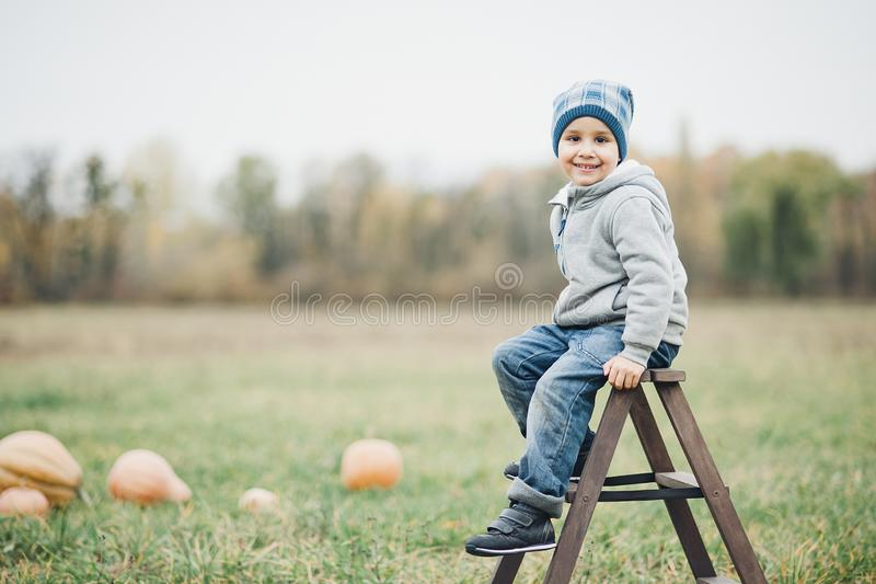Happy little toddler boy on pumpkin patch on cold autumn day, with a lot of pumpkins for halloween or thanksgiving. Kid on pumpkin field on cold autumn day royalty free stock image