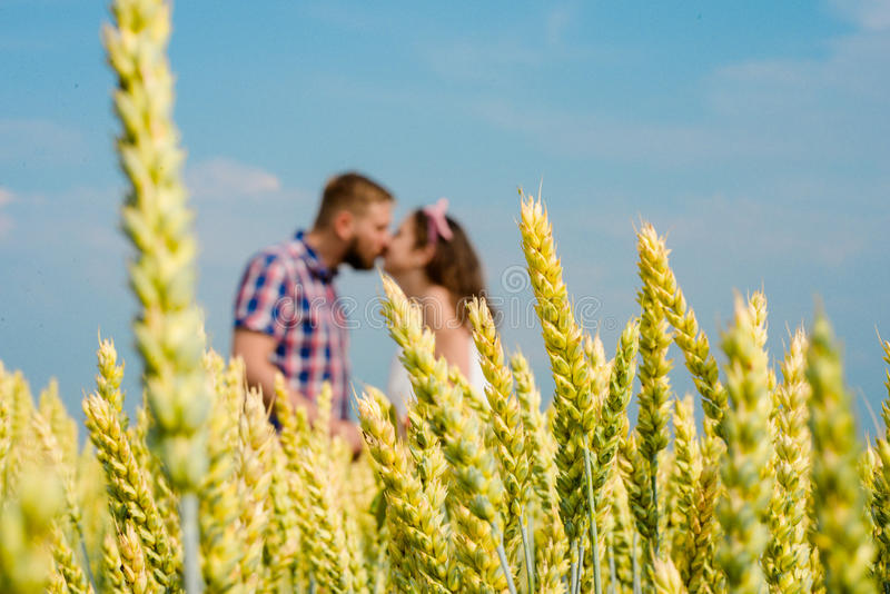 Happy loving young adult couple spending time on the field on sunny day. stock photography