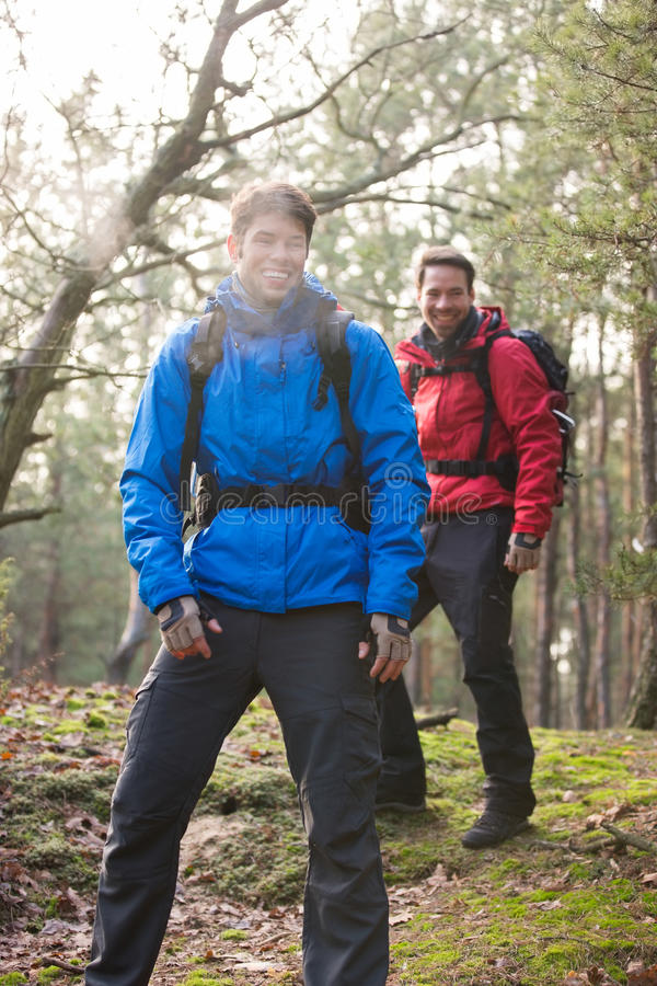 Happy male hikers looking away in forest royalty free stock image