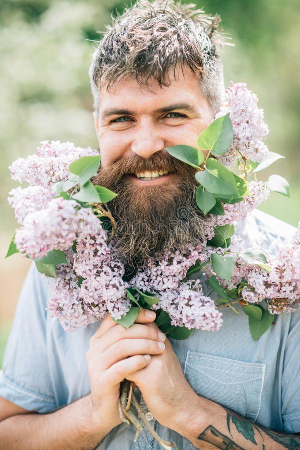 Happy man with beard and lilac blossom. Bearded man smile with lilac flowers on sunny day. Hipster enjoy scent of royalty free stock photo