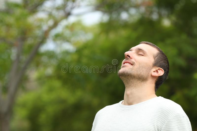 Happy man breathing deeply fresh air in a forest. With green trees in the background royalty free stock images