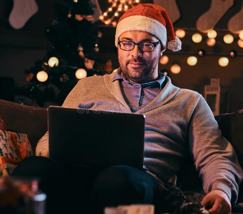 Happy man in glasses stroking a cat and using laptop while sitting on sofa at Christmas time. stock photos