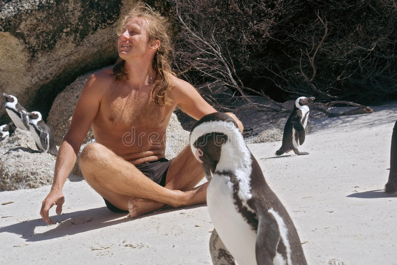 Happy man sunbathes while sitting among penguins royalty free stock photography