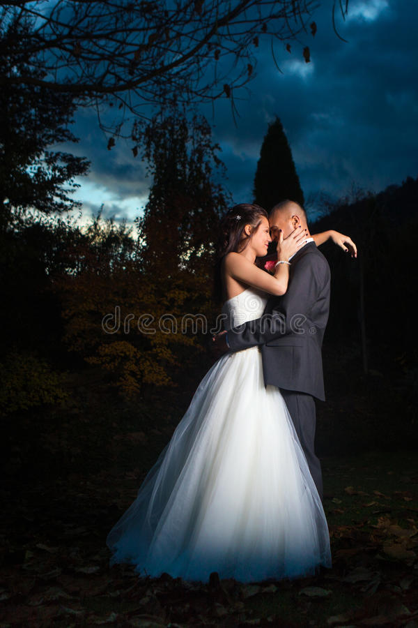 Happy Married Couple royalty free stock images