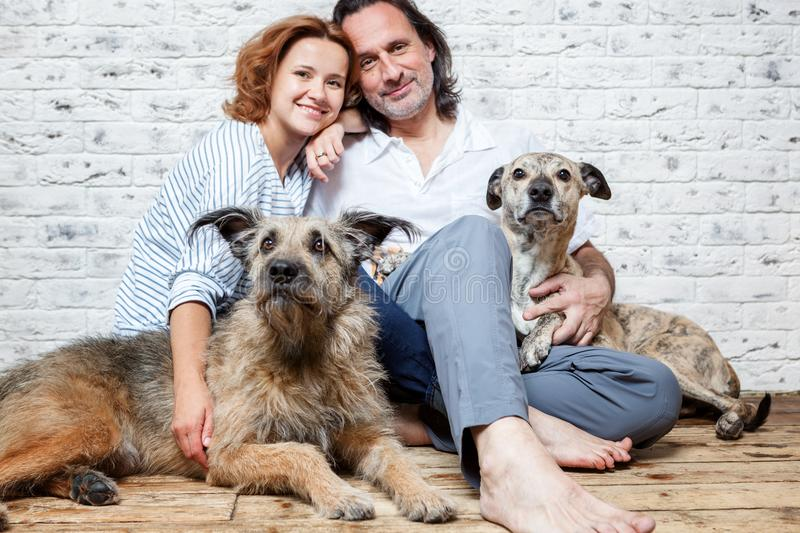 A happy married couple with their dogs, a seed portrait, love, c royalty free stock image
