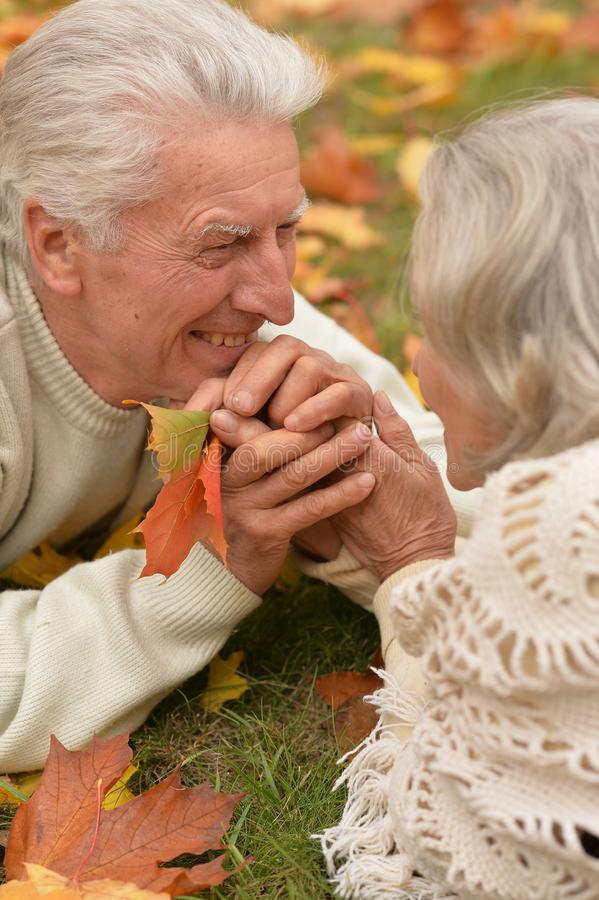 Close up portrait of happy mature couple. Happy mature couple posing outdoors in autumn park royalty free stock image