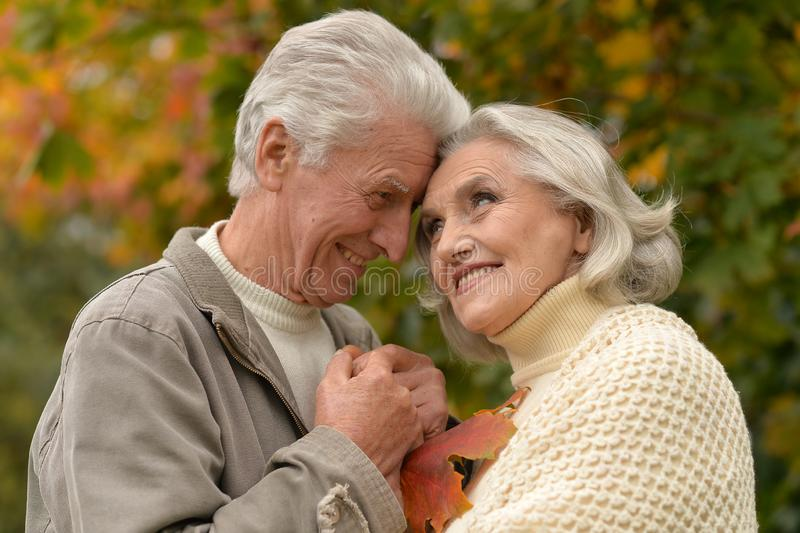Close up portrait of happy mature couple. Happy mature couple posing outdoors in autumn park stock images
