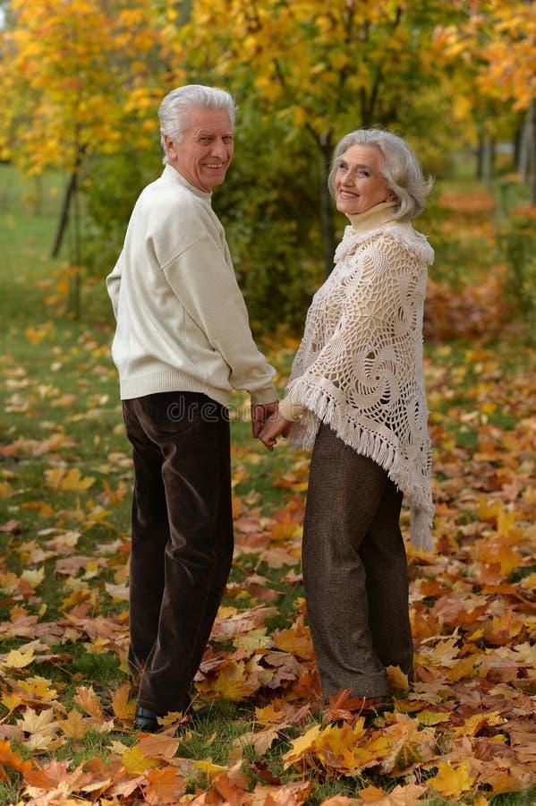 Portrait of happy mature couple posing outdoors in autumn park. Happy mature couple posing outdoors in autumn park royalty free stock images