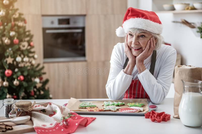Happy mature lady waiting for grandchildren with holiday cookies stock images
