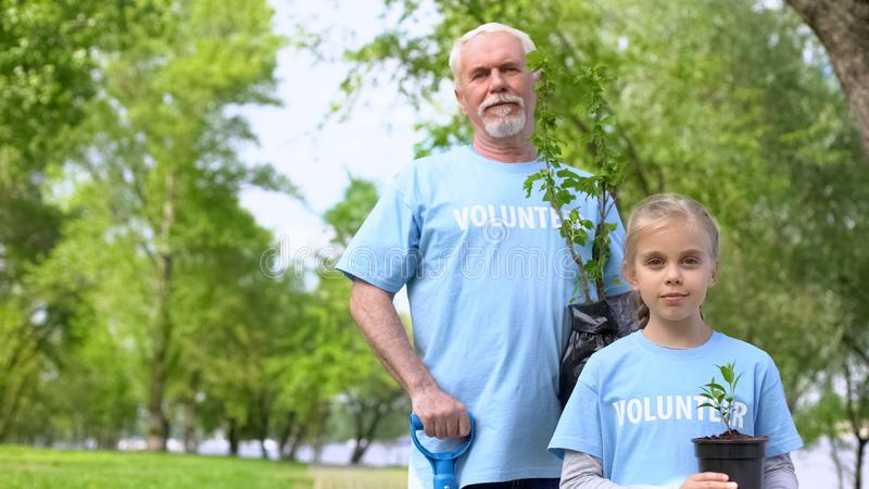 Happy mature man and granddaughter holding green plant sapling, eco volunteering stock photos