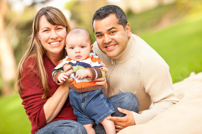 Happy Mixed Race Family Posing for A Portrait in the Park royalty free stock photos