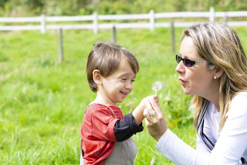 Happy mother and boy blowing dandelion stock images