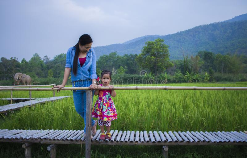 Happy Mother and her child play outdoors having fun in Green  rice field back ground royalty free stock image