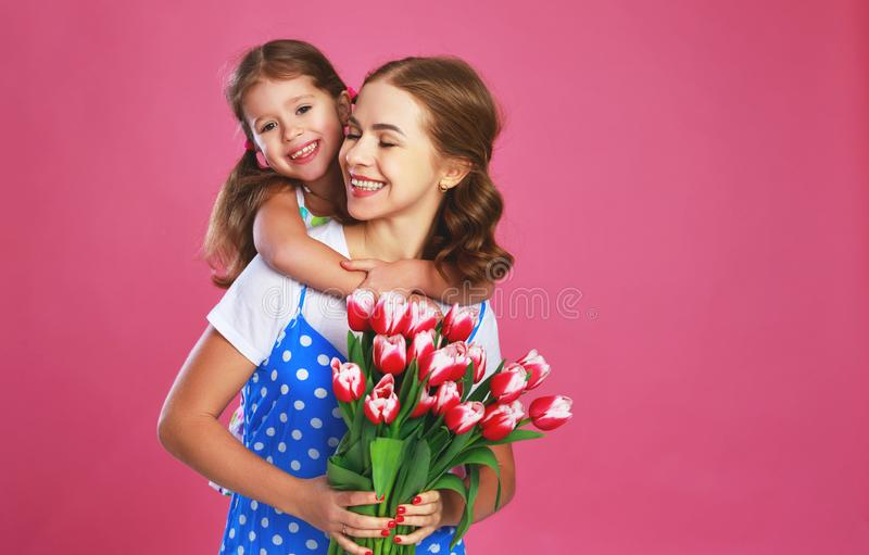Happy mother`s day! child daughter gives mother a bouquet of flowers on color pink background. Happy mother`s day! child daughter congratulates mother and gives royalty free stock image