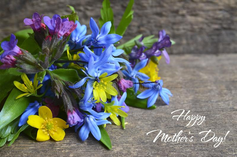Happy Mother`s Day greeting card with bouquet of first spring flowers on old wooden table.Springtime holidays concept. stock images