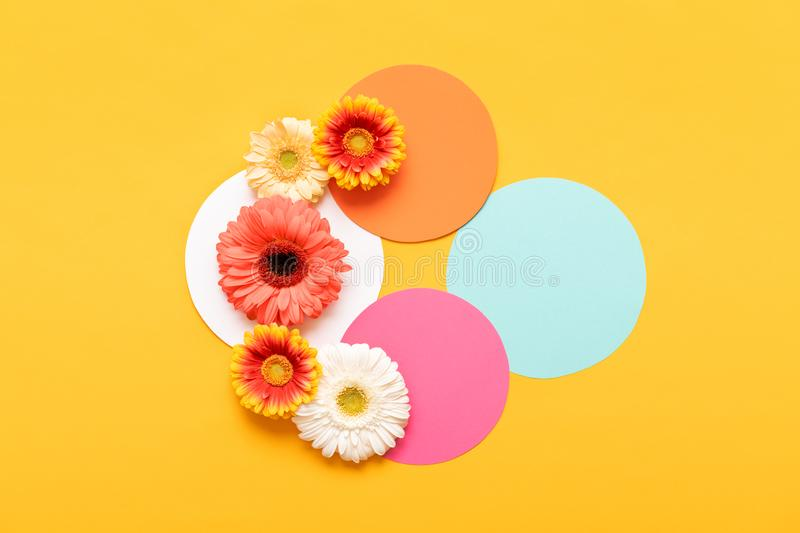 Happy Mother`s Day, Women`s Day, Valentine`s Day or Birthday Pastel Colored Background. Flat lay mock up greeting card. Happy Mother`s Day, Women`s Day stock image