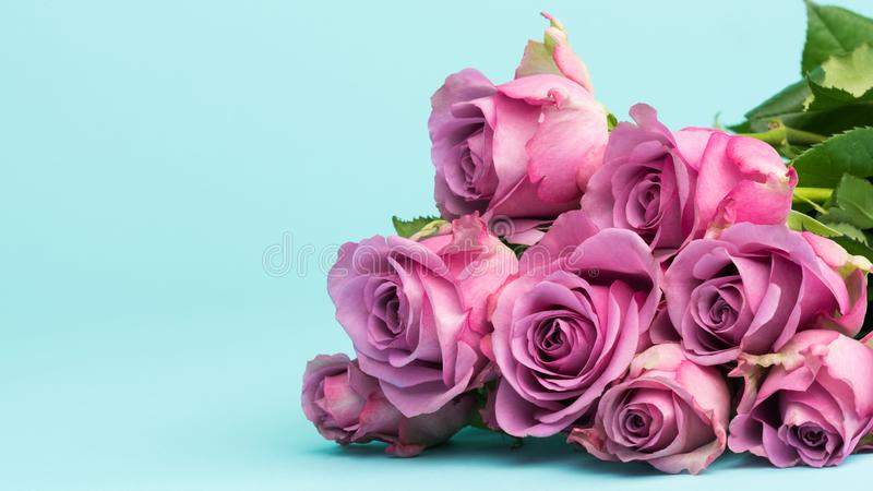 Happy Mother`s Day, Women`s Day, Valentine`s Day or Birthday Background. Greeting card with beautiful fresh pink roses. royalty free stock photo