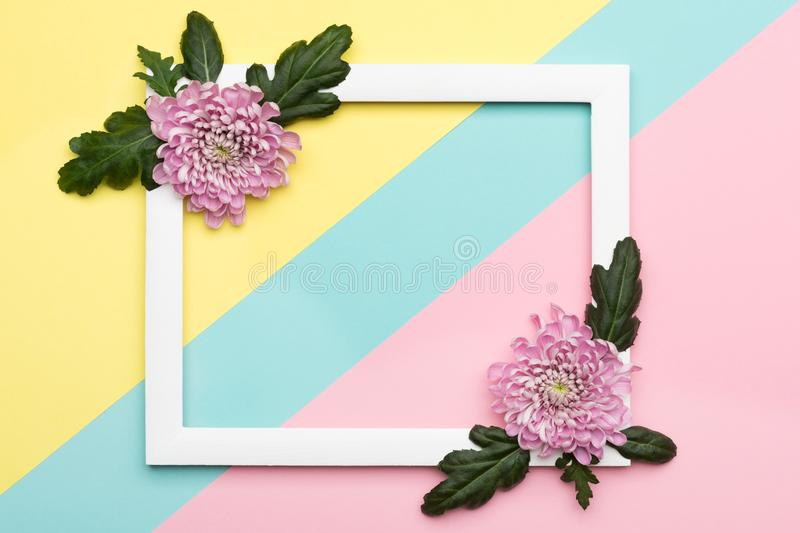 Happy Mother`s Day, Women`s Day, Valentine`s Day or Birthday Pastel Candy Colours Background. Floral flat lay concept. stock image