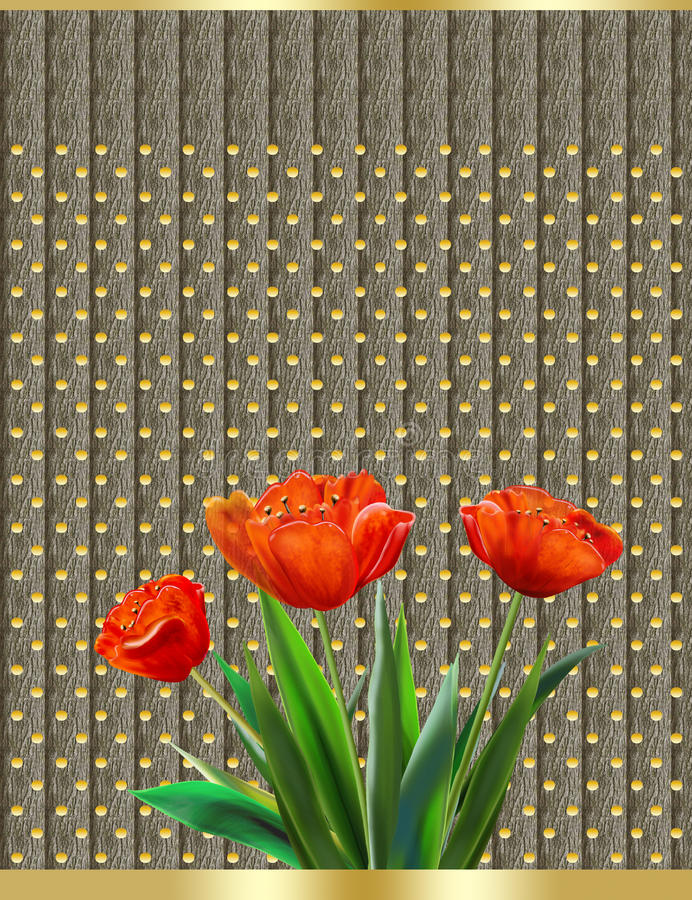 TULIP Happy Mothers day. Happy Mothers day, abstract background, tulips. Illustration.Three Red tulips on a gray background with polka dot pattern. For the stock illustration