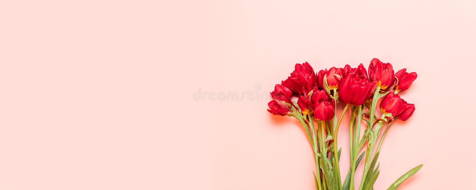 Happy Mothers day. Beautiful red tulips on pink background flat lay royalty free stock photography